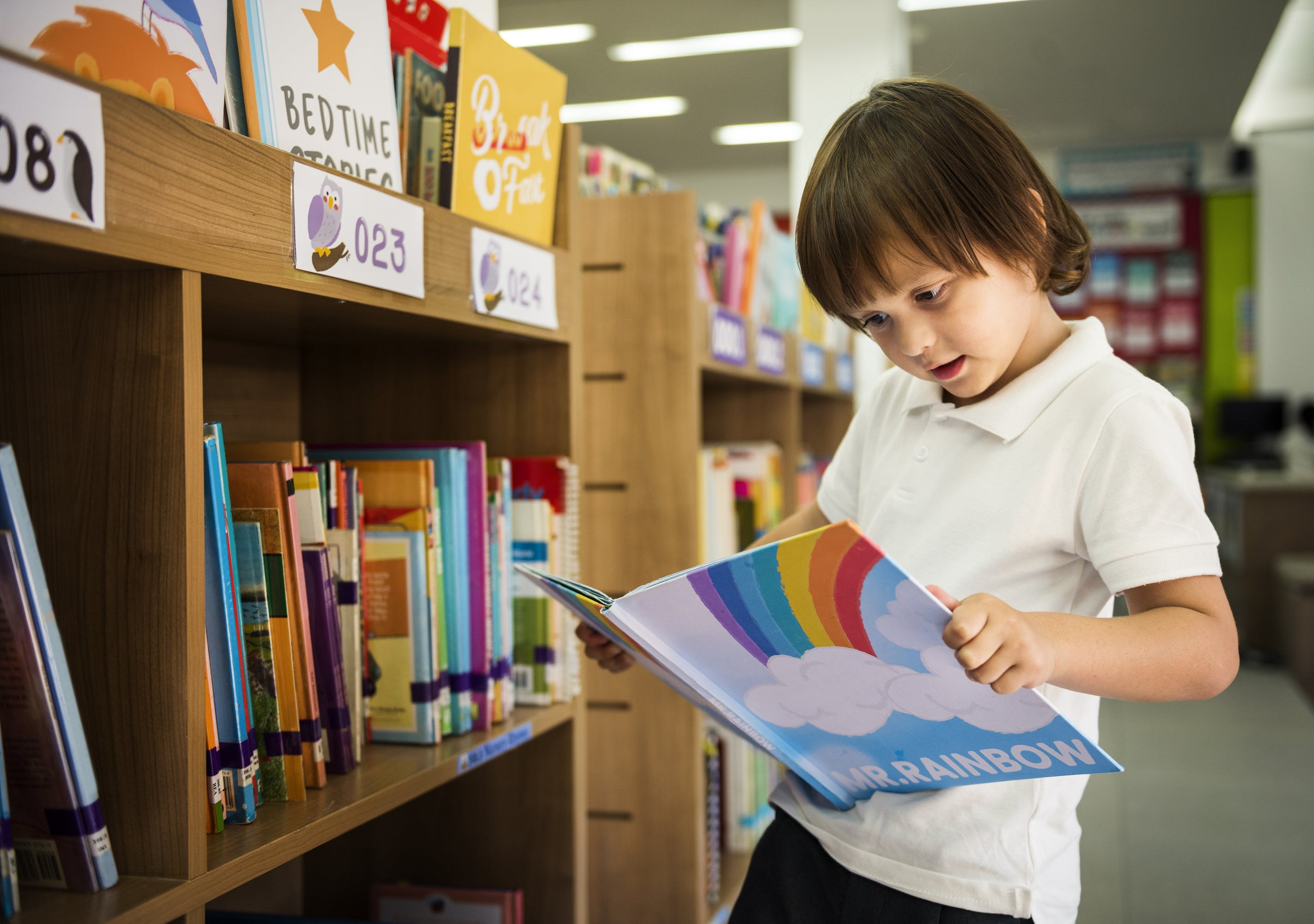young kid reading in school