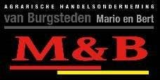 Company logo for 'LMB VAN BURGSTEDEN'.