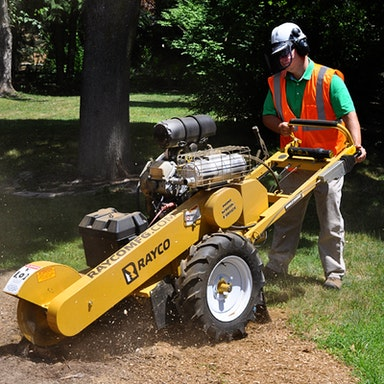 RG25HD Stump Cutter